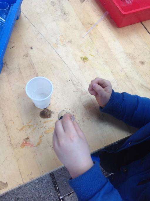 We added diluted bicarbonate of soda to cup two.