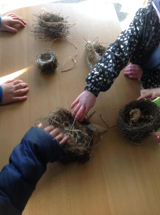 The nests were made from different things