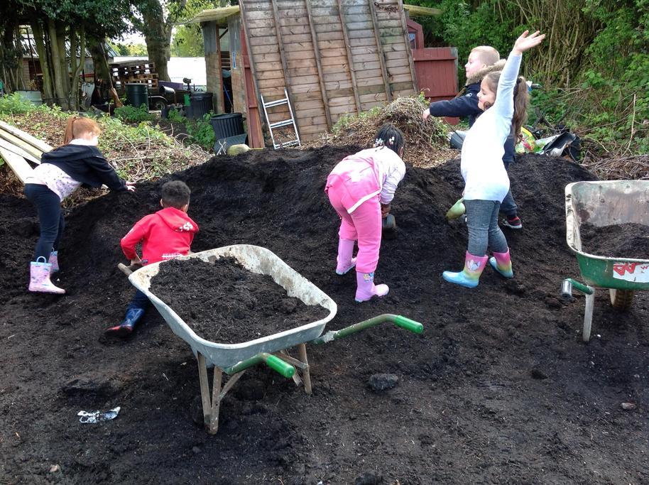More soil.