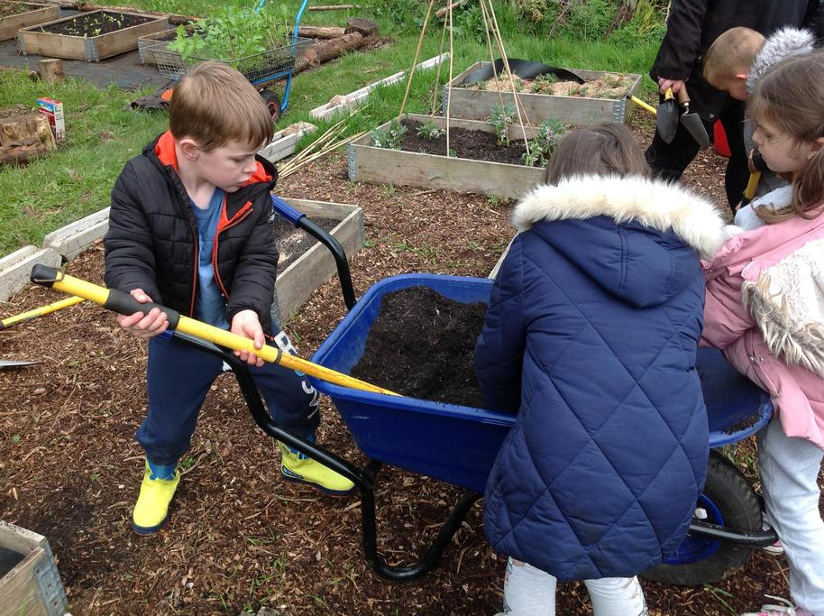 We had to transfer the soil to our planters.