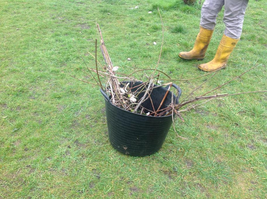We collected sticks, stones, grass and sand.