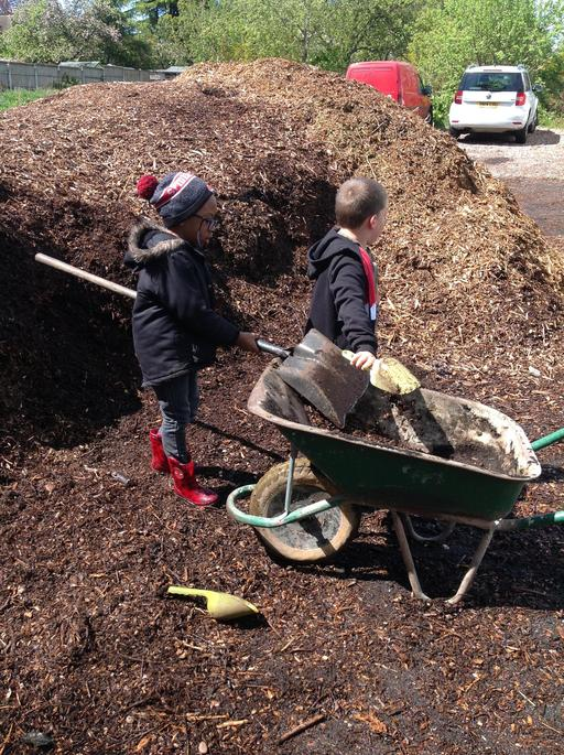 Collecting the woodchip.