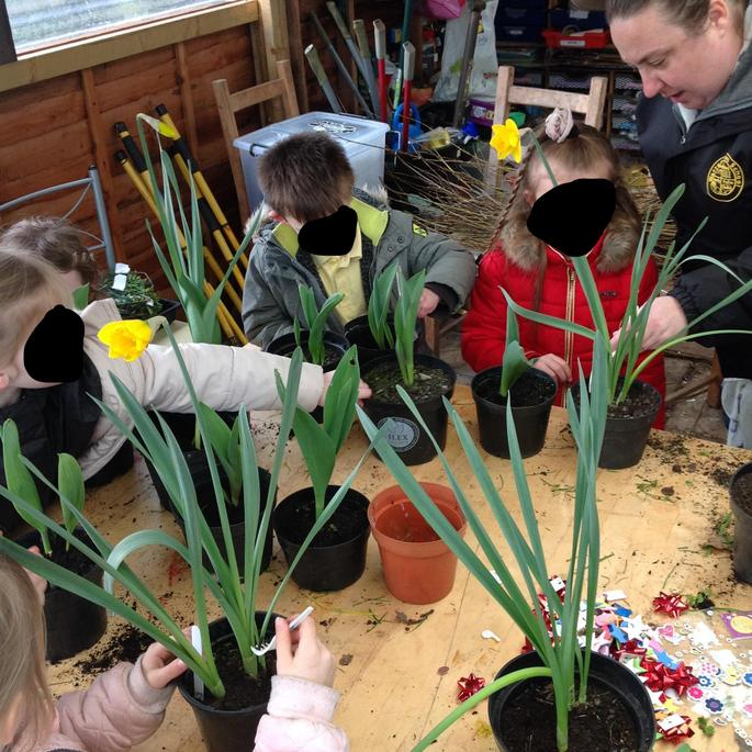 We decorated the pots for our Teachers.