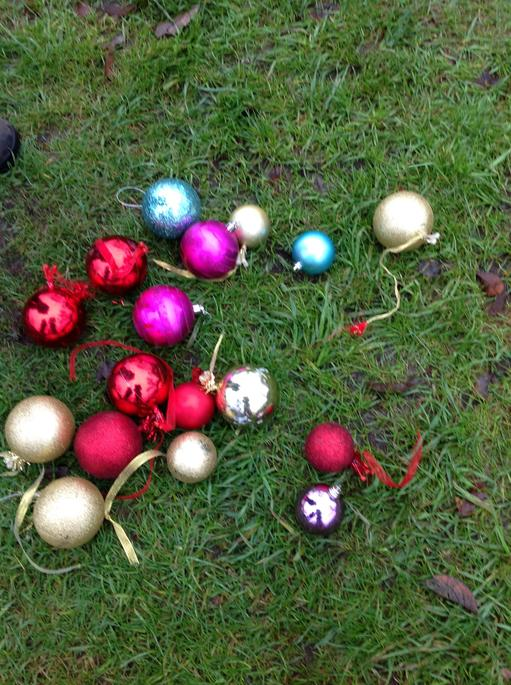 Today we looked for baubles round the Allotment.