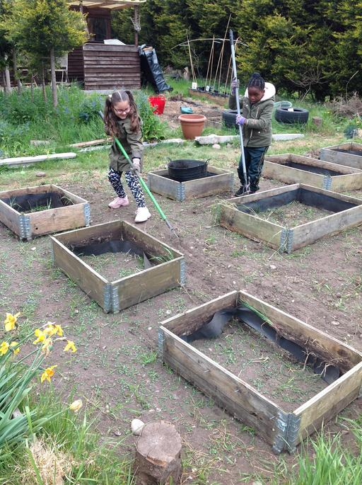 Our allotment plot has moved