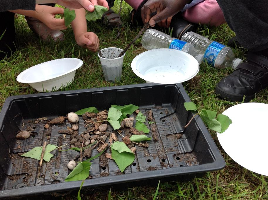 We had to filter some dirty water using natural materials.