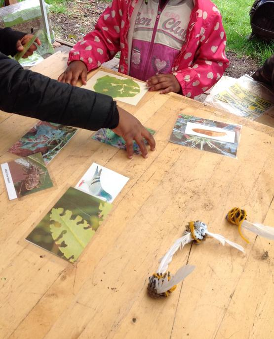 We looked at leaves and learned how to tell which animal has eaten our crops.