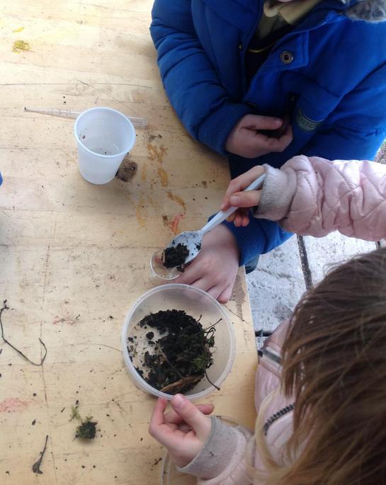 Bubbles in the vinegar cup means alkaline soil.