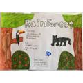 Lewis' rainforest poster