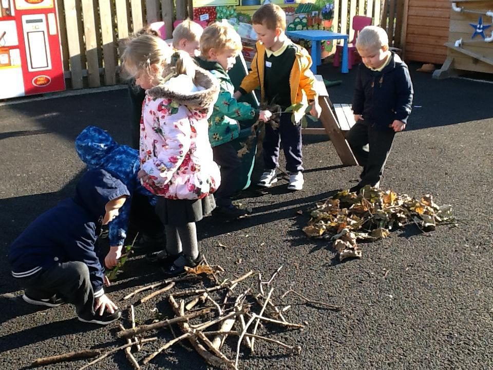 Sorting leaves and sticks.
