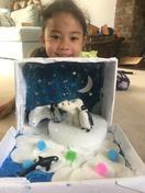 Savannah's shoebox arctic scene