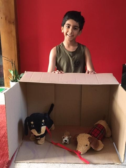 Taran's kennel for his toy puppies.