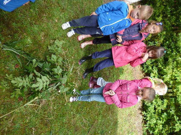 Forest School Fun!