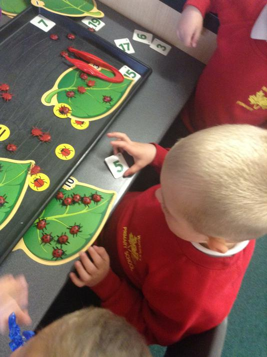 Doubling using ladybirds.