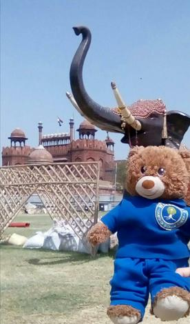 Bradley went to India with Mr Holland.