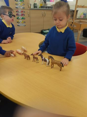 Maths Party - Ordering by size