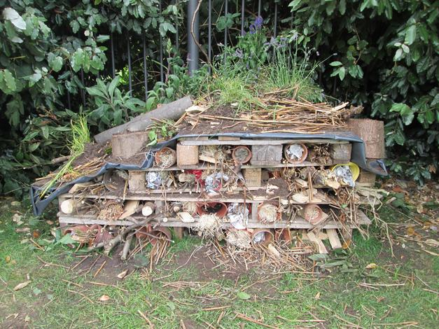 Our Bug Hotel!
