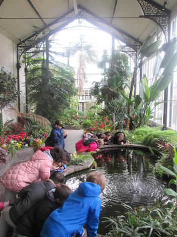 Buxton Botanical Gardens.