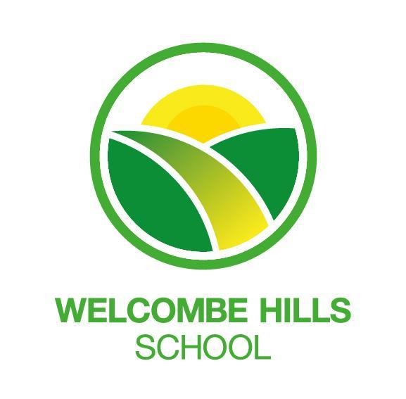 Careers Programme at Welcombe Hills