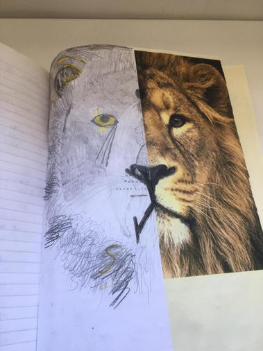 Amazing animal art work