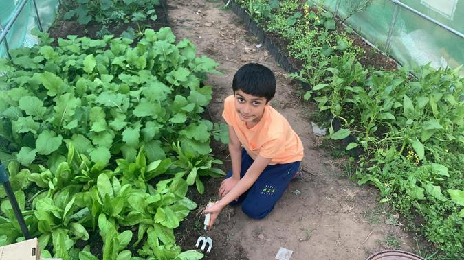 Adam planting some healthy vegetables!