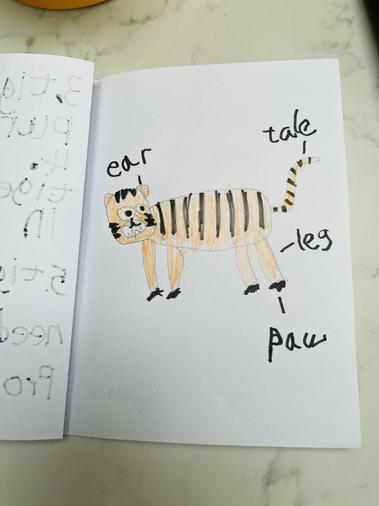 Labelling a tiger (featured continent and books)