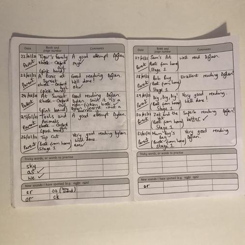 Dylan's fabulous reading log