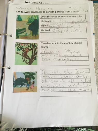 Sameer's crocodile work