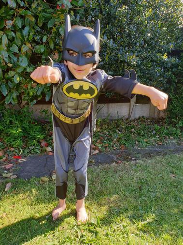 Superhero Sylvan