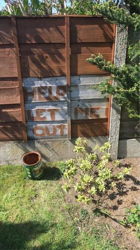Fence painting with a sense of humour!.jpg