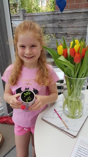 Growing well - Maisie and plant!