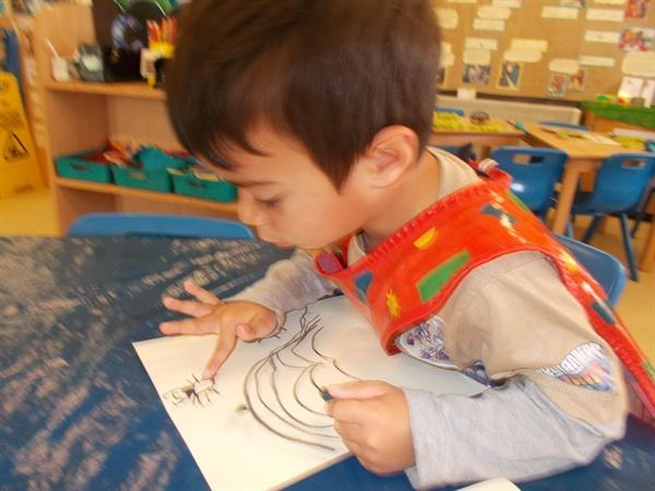 We have been painting and drawing minibeasts.