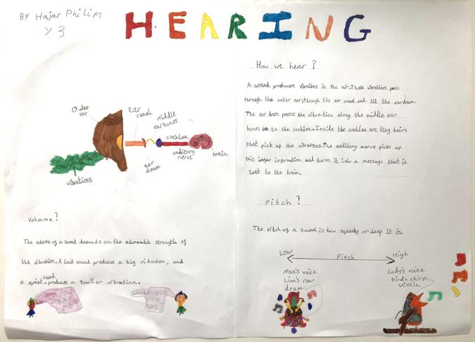 Hajar's been finding out about hearing - great!
