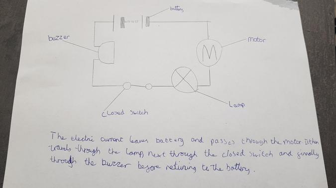 Circuits in science
