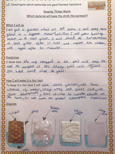 Laila's superb Science work