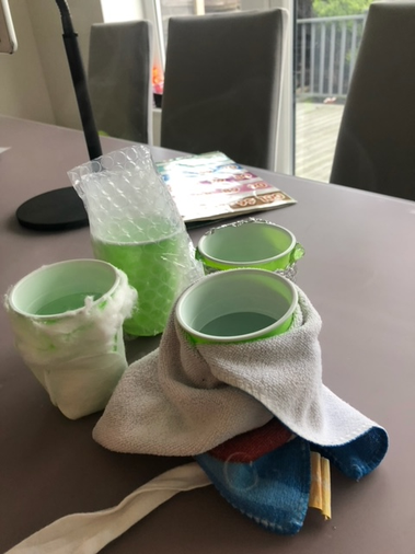 Ella set up her ice experiment