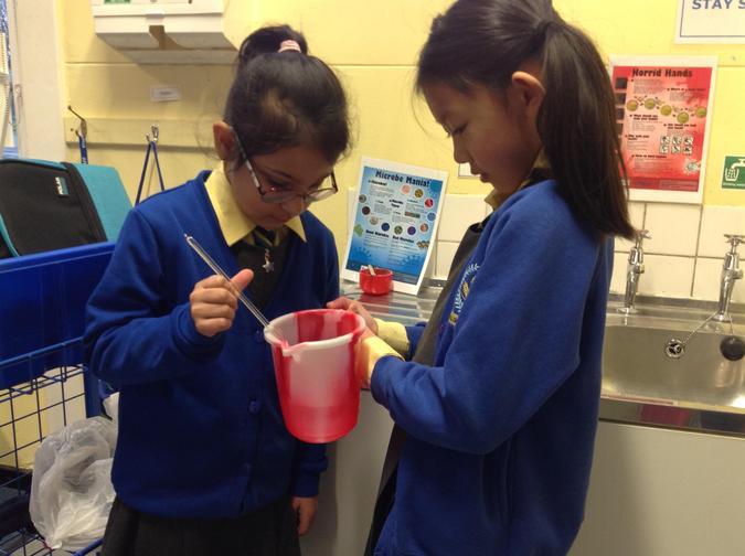 Aleena and Ella working together