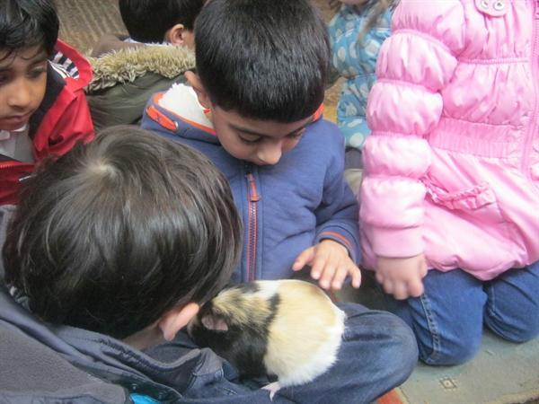 The Nursery had a fab day at Stockley Farm. ENJOY!