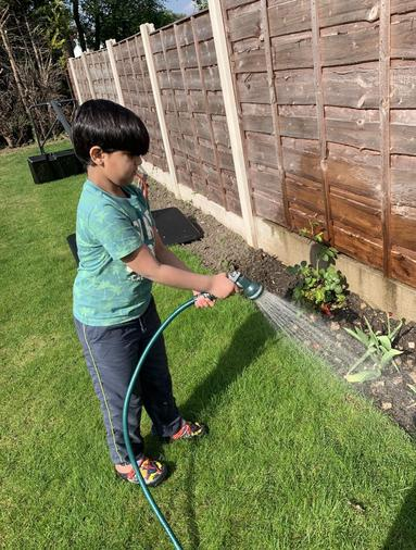 Hammad watering the plants