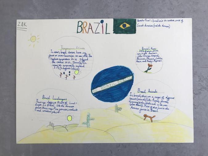 BRAZIL by Zak