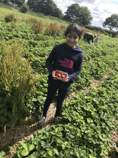 Alisha fruit picking
