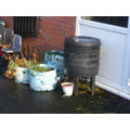 Nursery's fruit / veg.waste goes in the wormery