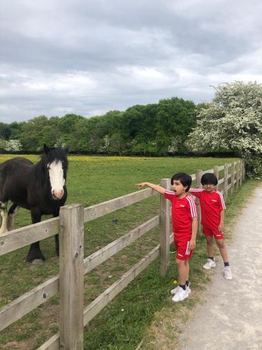 Joban, Jeo and horse