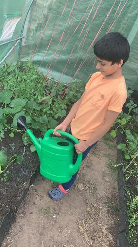Adam watering the plants