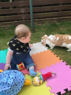 Baby George loves to watch the rabbits!
