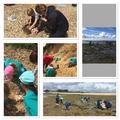 Yr 2 - Trip to Lepe Beach (Seahorses & Seashells)