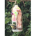 A visitor to one of the home made feeders
