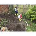 Busy at work - digging and raking in the garden.