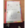 Harry's project on Bees