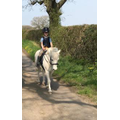 Happy hacking in the countryside on Taz.